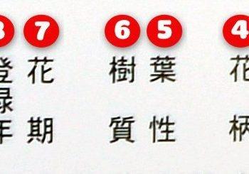 Clés pour une meilleur compréhension de l'encyclopédie des Satsukis                      Partie – 3 :