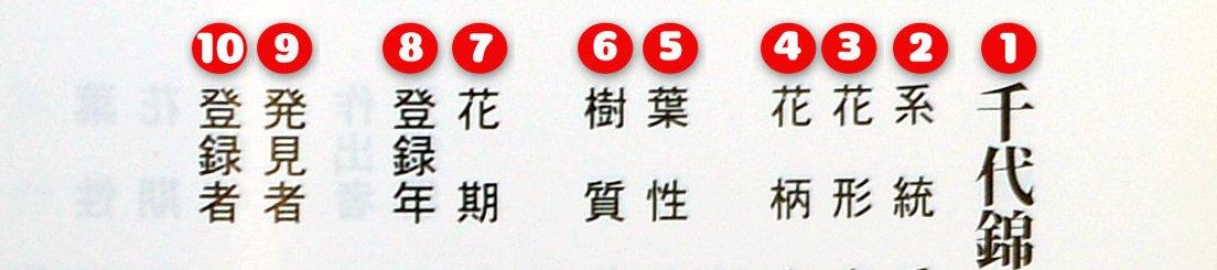 Clés pour une meilleur compréhension de l'encyclopédie des Satsukis                      Partie – 2 :